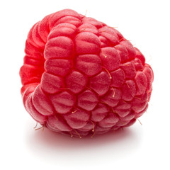 Fototapete - ripe raspberry isolated on white background close up