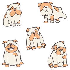 set of bulldogs
