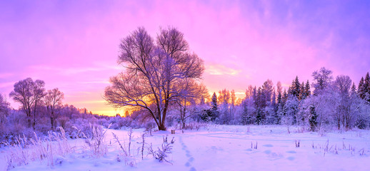 Photo on textile frame Purple winter panorama landscape with forest, trees covered snow and sunrise.