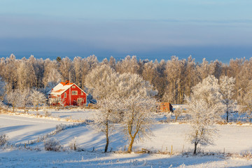 Winter landscape with a red house