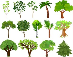 Set of different trees with green leaves on white background