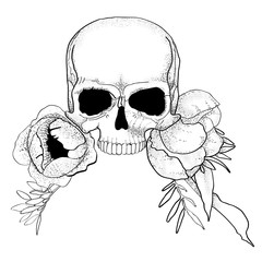 skull with peony flowers boho graphic vector illustration