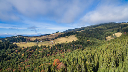 Aerial landscapes view of spruce forests and alpine meadows from the drone.