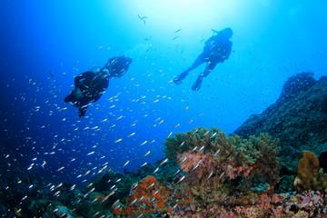 Scuba divers exploring coral reef underwater