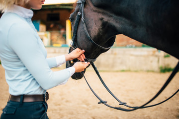 Female rider keeps the horse for a reason