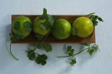 Sweet limes and coriander in tray