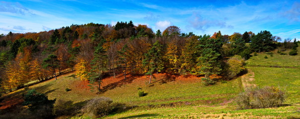 Herbstpanorama mit Wiesen und bunten Bäumen in idyllischer Natur in der Eifel