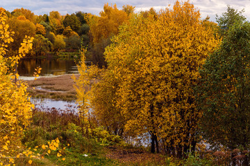 Autumn landscape with a pond in Russia