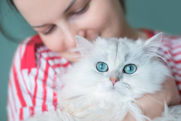 Young attractive woman holding gorgeous white long haired cat