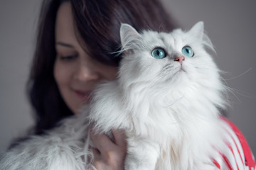 Beautiful young brunette woman hugging lovely persian white long haired cat