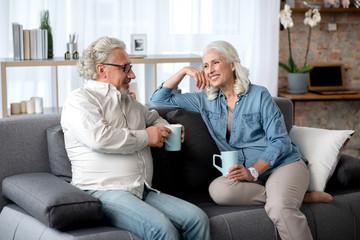 Joyful senior married couple relaxing in living room