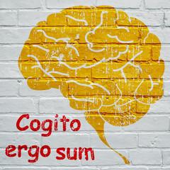 Graffiti, Cogito ergo sum