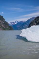 Ice Floe in Summer