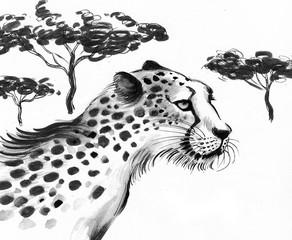 Cheetah in the savanna