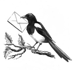 Magpie with a letter