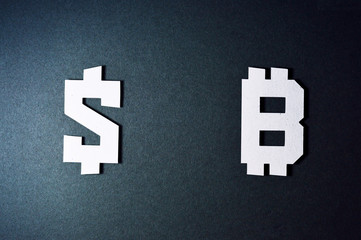 dollar and bitcoin currency symbols template