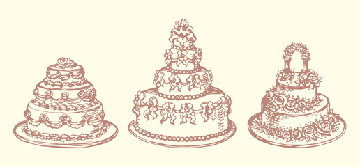 Cake. Vector drawing