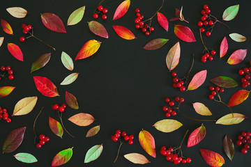 Autumn seasonal dark background