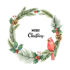 Watercolor vector Christmas frame with Bird Cardinal and fir branches.