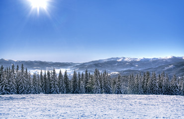 Beautiful winter landscape of mountains which including of copy-space for text.