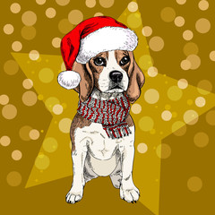 Vector portrait of beagle dog wearing santa hat and scarf. Isolated on star and sparklers bokeh. Skecthed color illustraion. Christmas, Xmas, New year. Party decoration, promotion, greeting card
