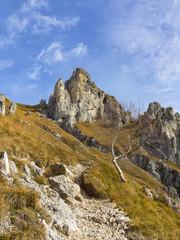 Paesaggio delle Grigne