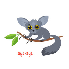 Aye-aye from Madagascar in cartoon style.