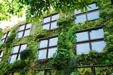 Green architecture concept. Building exterior covered with plants in modern city
