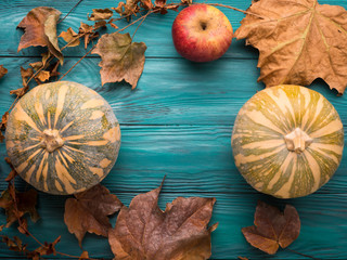 Moody green autumn background with pumpkins , apples, yellow leaves. Fall still life flat lay
