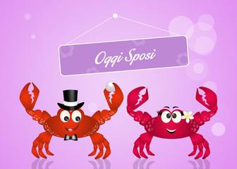 Wedding of crabs