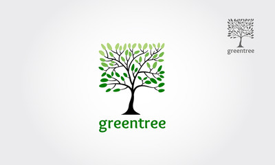 The green tree square vector logo design, vector of abstract tree icon