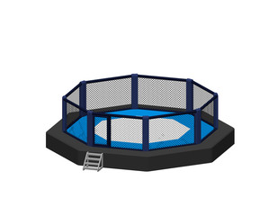 Octagon fight cage. Isolated on white background. 3d Vector illustration.