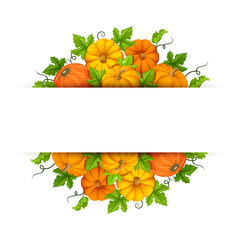 Vector banner with orange pumpkins and green leaves.