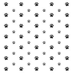 traces of dog on white background