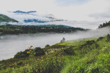 Bhutanese village near the river on a foggy day at Punakha, Bhutan