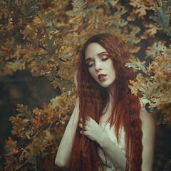 Portrait of a beautiful young sensual woman with very long red hair in autumn oak leaves. Colors of autumn.