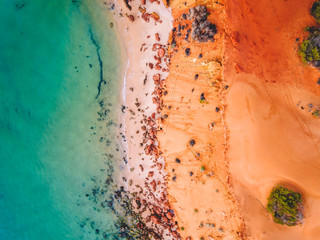 Shark Bay - Western Australia - 1
