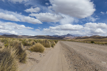 Wall Mural - A desert on the altiplano of the andes in Bolivia