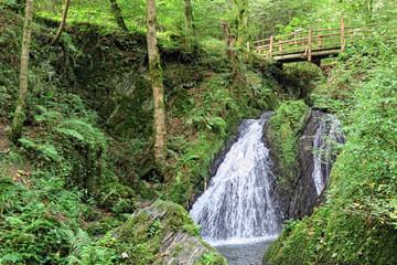 Waterfall the wild swoosh in wild Endertal valley in eifel region (Germany)