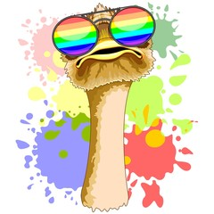 Poster Draw Funny Ostrich with Rainbow Sunglasses