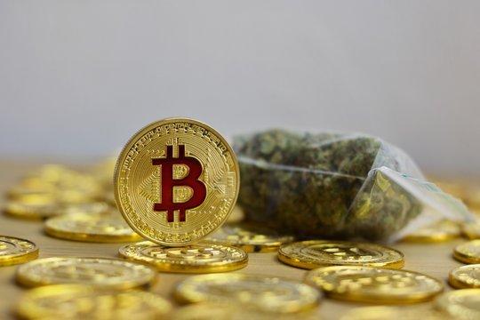 Bitcoin coin gold concept
