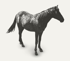 Vector horse illustration. Polygon shaped line- art. Geometrical animal drawing.