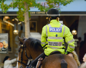 Rear view of Mounted Police Officer, Shallow Depth of Field Split Toning Horizontal Photography
