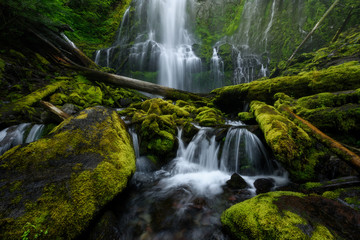 Proxy Falls, Oregon, USA, during summer