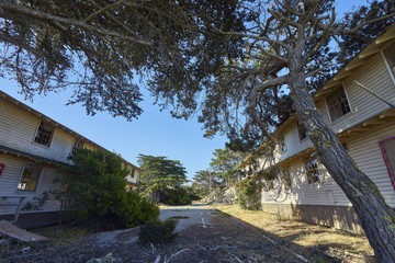 fascinating defunct and decaying houses in an abandoned area near Monterey, California