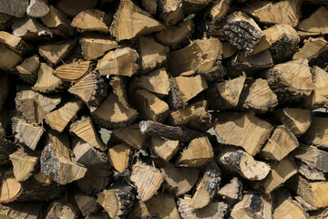 Pattern created by ends of stacked, cut firewood