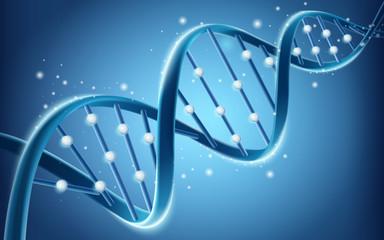 DNA structure design