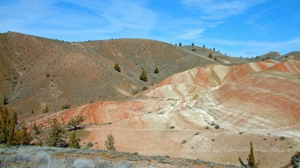 Daytime painted hills Spring Sutton Mountain John Day Great Basin High Desert Columbia Plateau