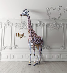 the giraffe hold the chandelier