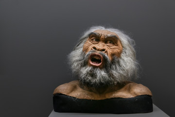 Wax face of primitive person at a historical museum